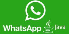 تحميل برنامج واتس اب جافا مجاناً للاجهزة العادية والقديمة WhatsApp jar